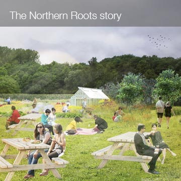 The Northern Roots Story